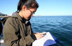 Carmen collecting data in the field