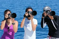 Eager photo-ID photographers, Philippine