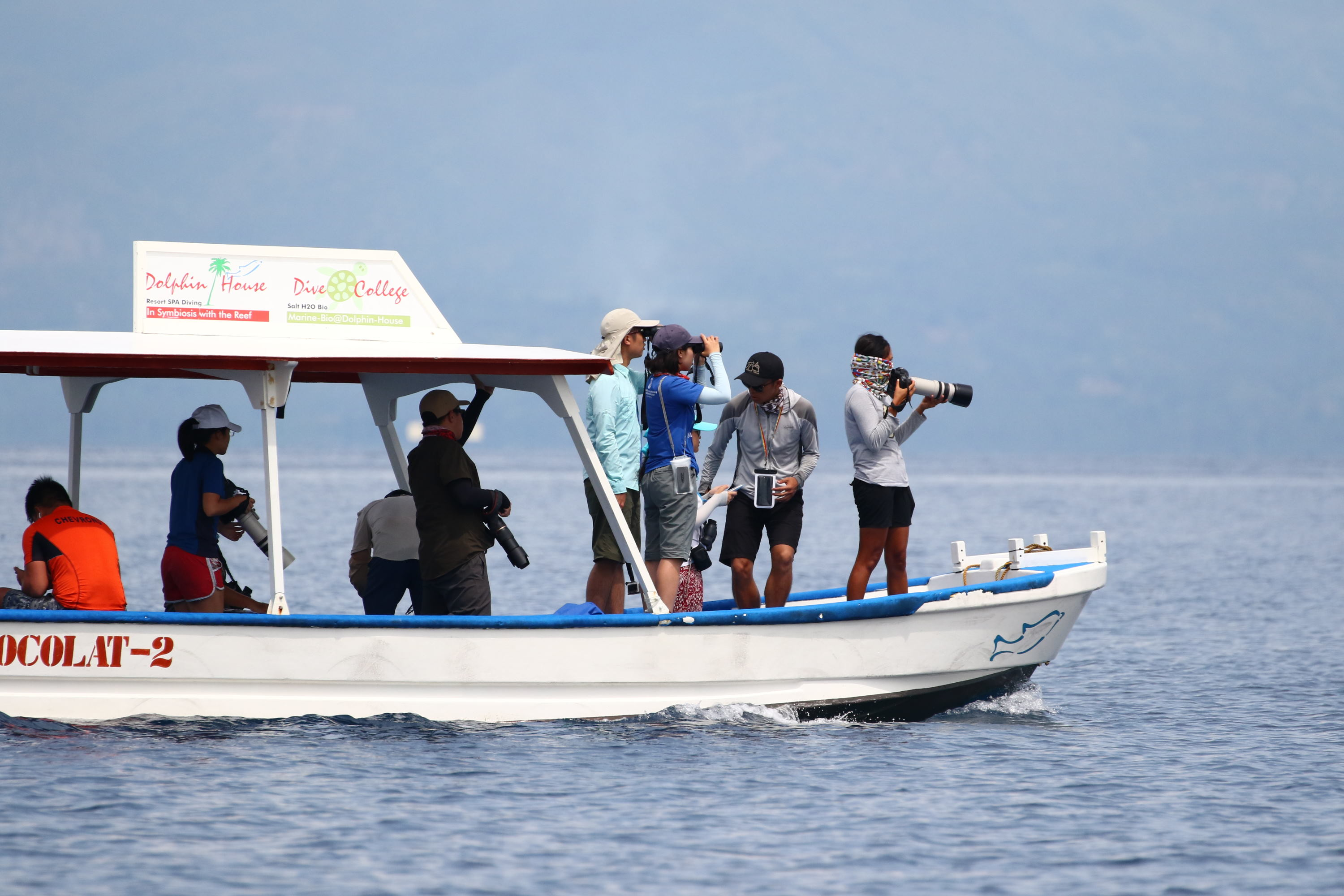 Dolphin encounter during Photo-ID survey