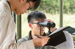 Students recording focal behaviour