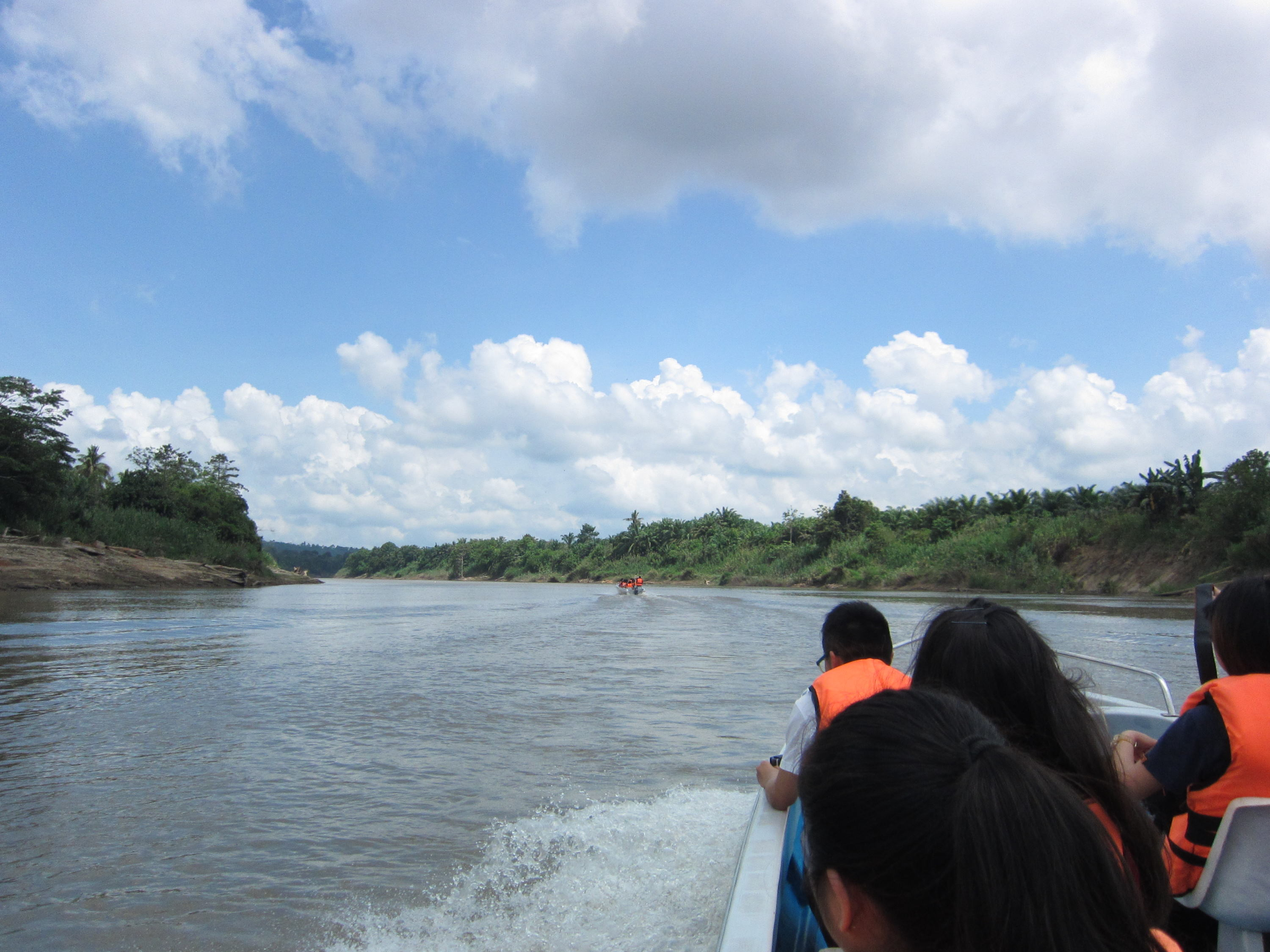 Boat ride on Kota Kinabatangan (Photo by Carmen Or)