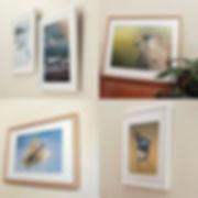 wallprints-1.jpg