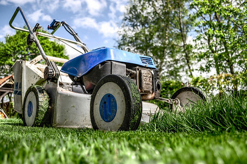Lawn Mower Selection Support_edited.jpg