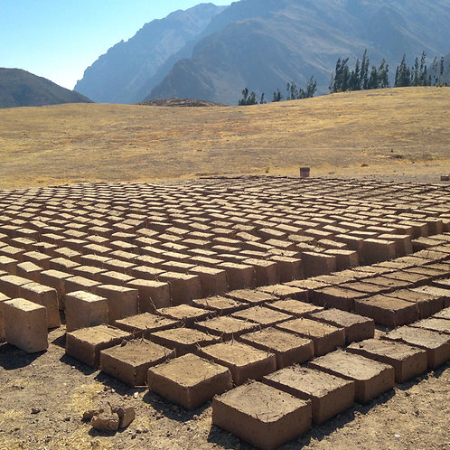 Buy 30 bricks to help build a greenhouse for a community in Peru