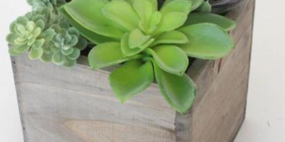 Faux Succulent Planter Workshop
