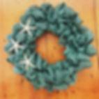 Teal Starfish.jpg