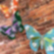 Butterfly Kit.jpg