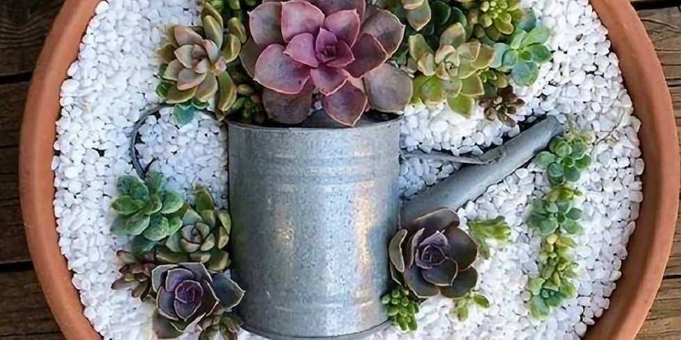 Succulent Watering Can Planter Workshop
