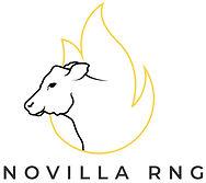 Novilla Logo.jpg