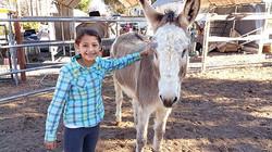 Jack (donkey) with Ashley (visitor)