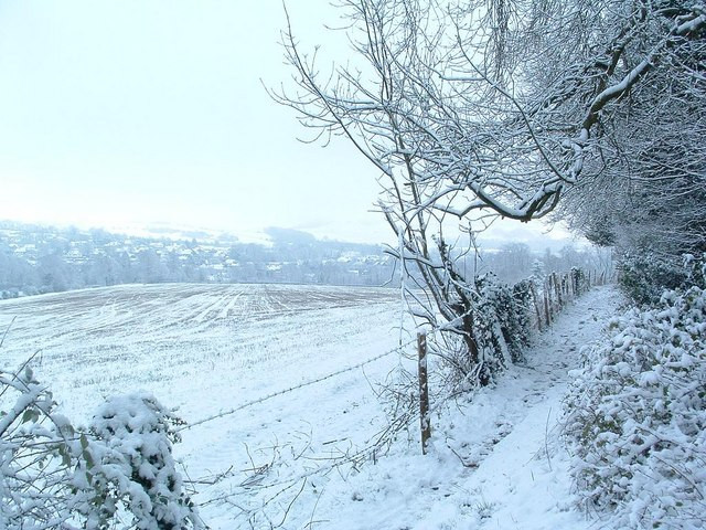 christmas-snow-scene