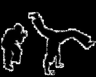 capoeira-set-vector-4167987_edited.png