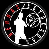 Bernas_Logo.png