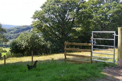 small gate.jpg