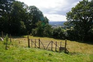 mondrian gates view.jpg