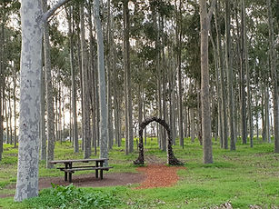 Arch with trees.jpg