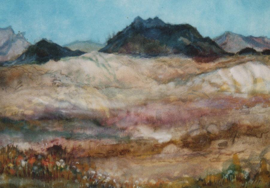 205 Desertul Neghev.jpg