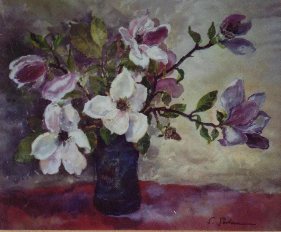 181 Magnolii.jpg