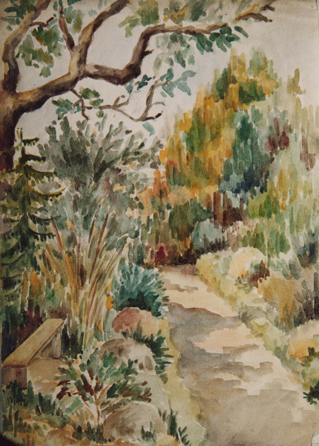 9 - Alee in gradina botanica.jpg