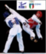 Vuoi praticare Taekwondo ? Clicca Qui!