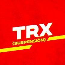 13 - TRX.png