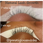 Before and After (Natural Lash Growth)