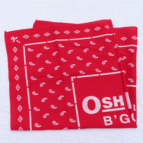 Red paisley OshKosh bandana handkerchief folded into a ssquare