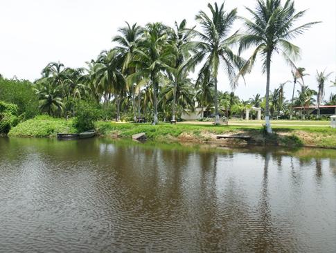 LagunaMia4