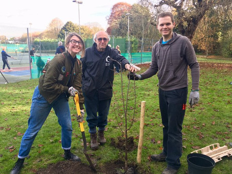 Volunteer with Swale Friends of the Earth