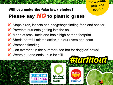 Turf it out! Our new campaign against plastic grass