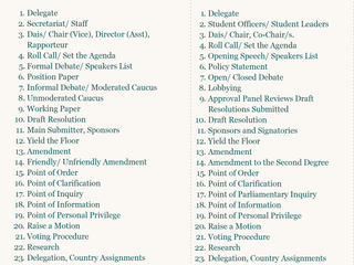 Contrasting Commonly Used Terms in Traditional (North American) Model UN vs. THIMUN (European).