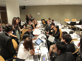 Five Steps to Success in a Special Committee at a Model UN Conference