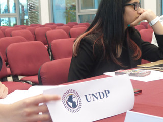 MUN Power Couples - Tips for Double Delegations in Model United Nations
