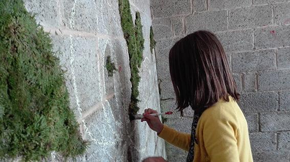 Ecole de Bellevaux - Animations Nature -