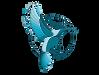 Logo Peau M des Sens 4-3-01.png