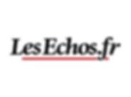 Logo Les Echos.fr wix-01.png