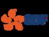 Logo EDF 4-3-01.png
