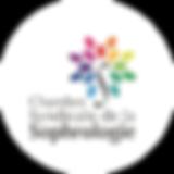 Logo EC Conseil 160-01-01.png