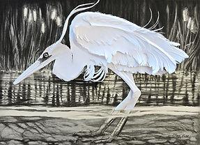 Koshkonong Heron.jpg