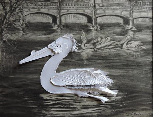 Pelican Invasion