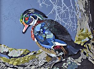 4_Wary Wood Duck copy.jpg