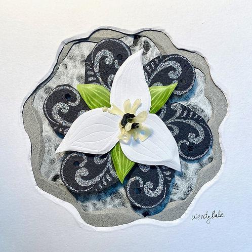 Little White Trillium