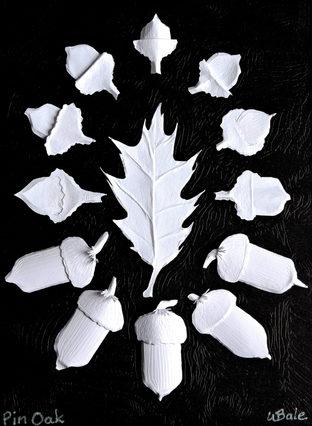47-Pin Oak.jpg .jpg