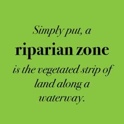 what is a riparian zone?