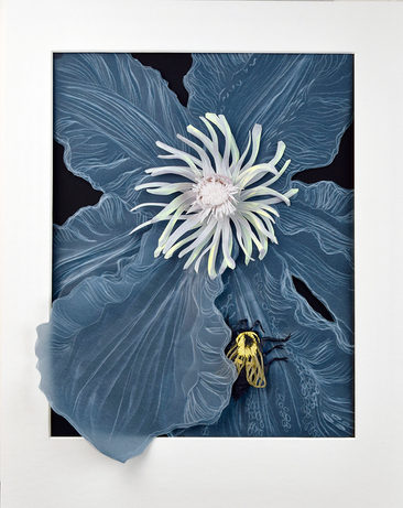 Napping Bumblebee
