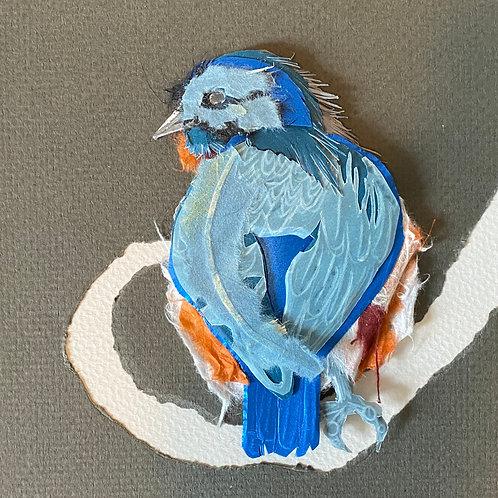 Bluebird 2