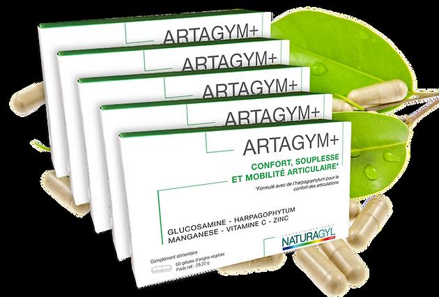ARTAGYM-5boites sur feuilles.png