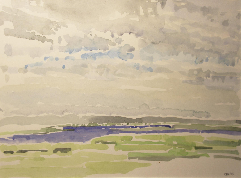 Marsh at Cabin