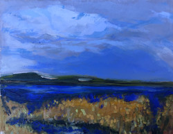 Study in Blue and Gold $350