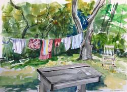 Bright Laundry $250